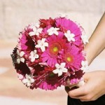 blomstergalleri-105
