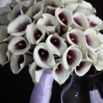 blomstergalleri-30