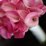 blomstergalleri-31