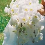 blomstergalleri-73