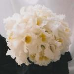 blomstergalleri-74
